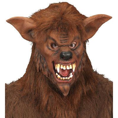 Werwolf Maske Halloween (WERWOLF LATEX MASKE & HAAR # Halloween Karneval Monster Wolf Kostüm Party 8340W)