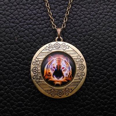 Colorful Tiger Cabochon LOCKET Pendant Bronze Chain Necklace USA Shipper #40