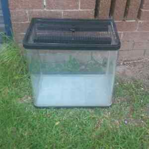 2ft fish tank Ashmore Gold Coast City Preview