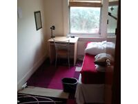 Great Single room available in October, HOVE