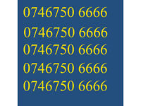 GOLD VIP BUSINESS EASY GOOD MOBILE PHONE NUMBER DIAMOND PLATINUM SIM CARD