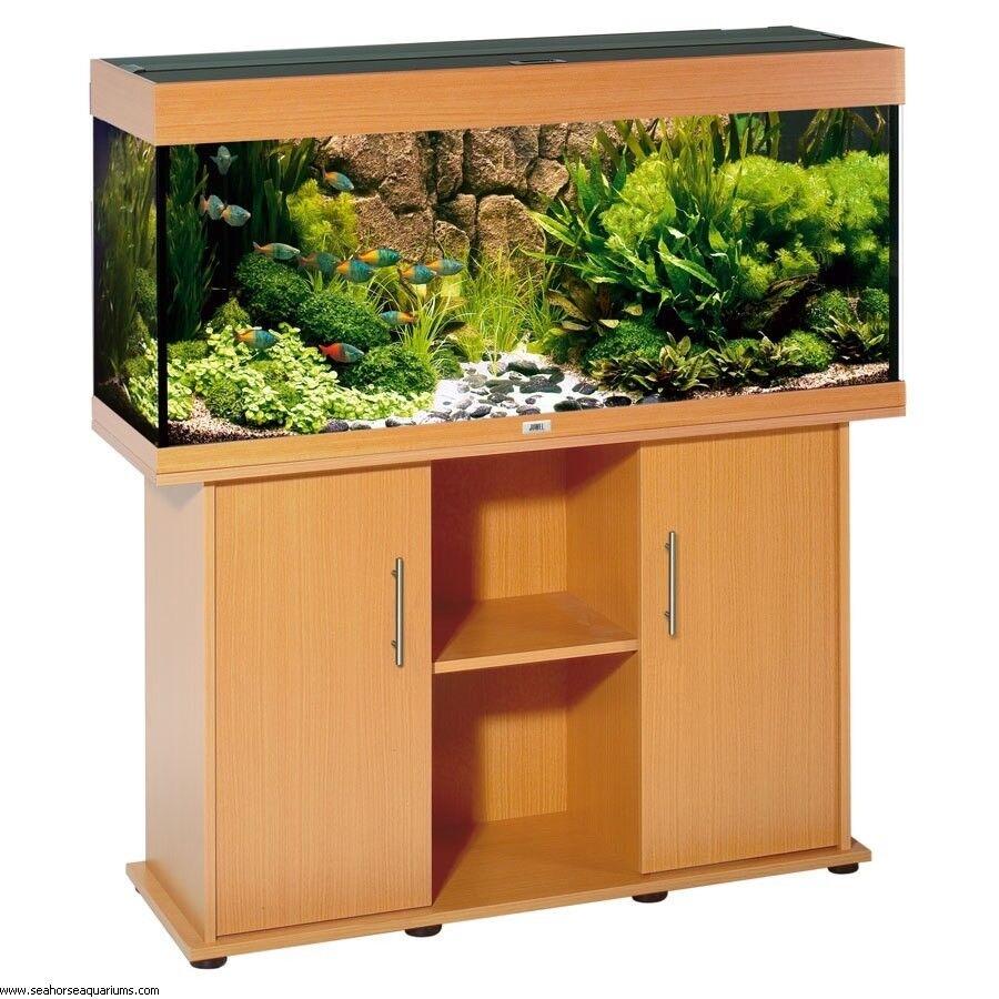 Juwel Rio 300 Aquarium 1000 Aquarium Ideas