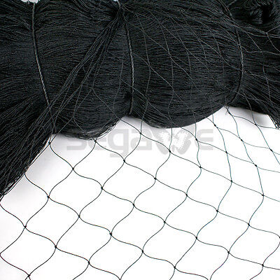 50 By 25 Standard Bird Netting Ideal For Gardens And Lightweight Applications