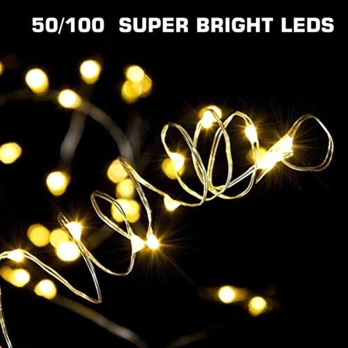 50-100 LEDs Battery Operated Mini LED Copper Wire String Fai