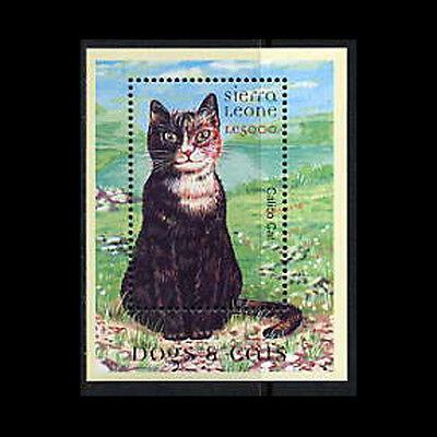 Sierra Leone, Sc #2338, MNH, 2000, S/S, Cats, CA122F