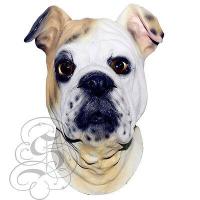 Latex Ganzer Kopf Realistische House Haustier Bulldogge Party Kostüm - House Party Kostüm
