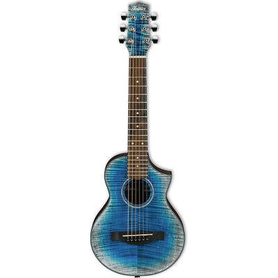 ibanez black acoustic guitar for sale  Merchantville