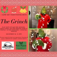 Grinch Photo Session - Nov.18th Book Now!!