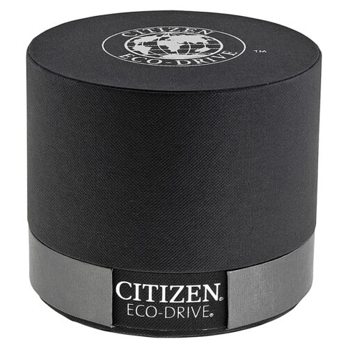 Citizen EcoDrive Perpetual Calendar Chronograph Mens Watch BL525002L