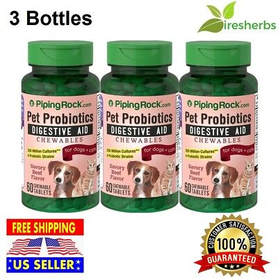 Pet Probiotics Digestive Aid Supplement for Dogs & Cats Savory Beef Flavor - Savory Beef Flavor
