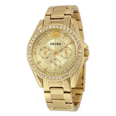 (Fossil Riley Multi-Function Champagne Dial Ladies Watch ES3203)