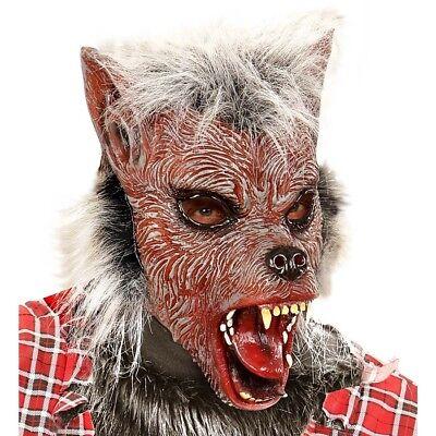 Werwolf Maske Halloween (WERWOLF LATEX MASKE Halloween Horror Grusel Wolf Herren Kostüm Party Deko 00383)