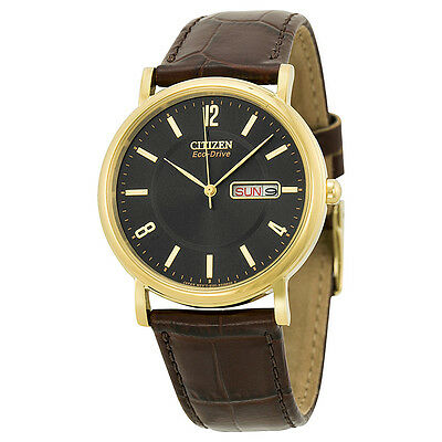 Citizen Eco Drive Gold-tone Stainless Steel Brown Leather Mens Watch BM8242-08E