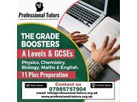 11 PLUS/ GCSEs/ A LEVELS