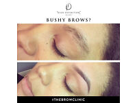 HD Brows Poole
