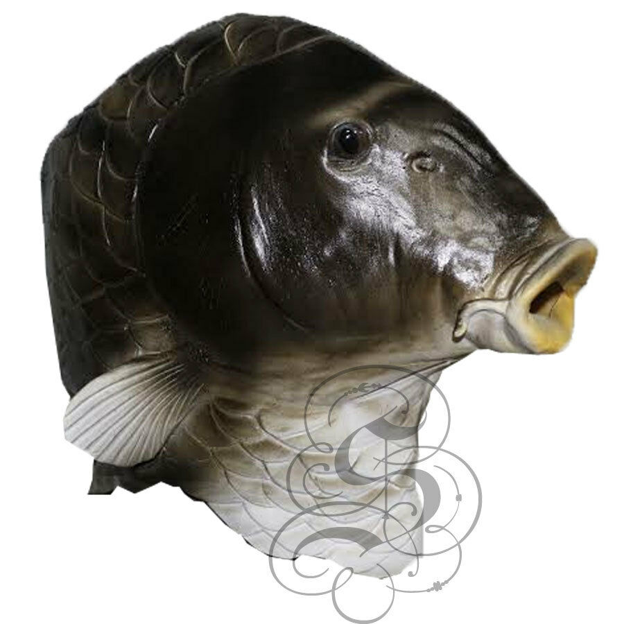 Latex overhead realistic animal aquatic fish fancy props for Fish head mask