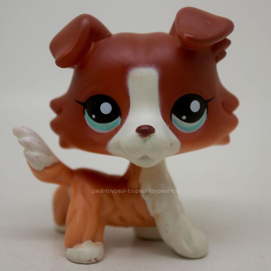lps brown dog littlest - photo #13