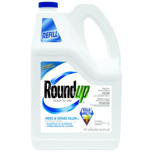 roundup pump n go weed