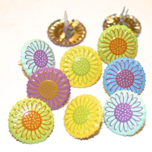 PASTEL DAISY FLOWER BRADS  2 CUTE 5 COLORS
