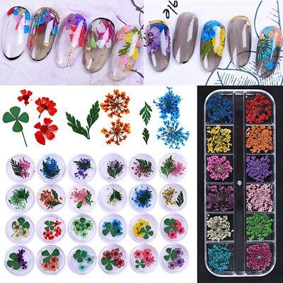 Trocken Blume 3D Nail Art Dekoration Maniküre Blatt Blumen Pflanzen für Gellack ()