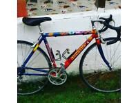 Columbus Road Bike ladies Road Bike