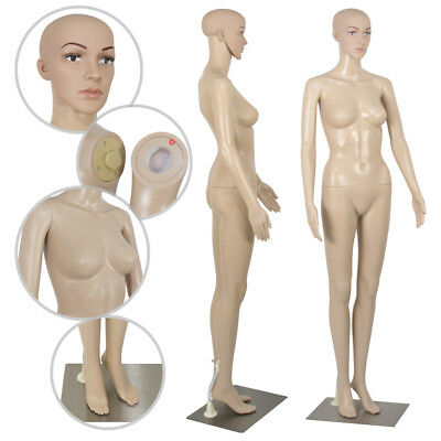 Female Mannequin Plastic Realistic Display Head Turns Dress Form W Base