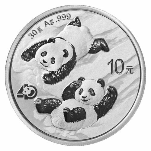 2022 China 30 g Silver Panda ¥10 Coin GEM BU PRESALE
