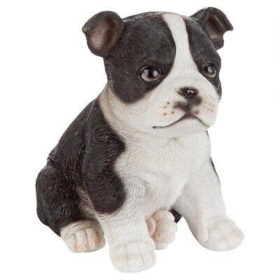 Boston Terrier Statues - Boston Terrier Puppy Partner Design Toscano Collectible Dog Statue