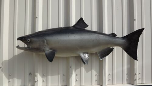 """40"""" King Salmon Two Sided Fish Mount Replica - 10 Business Day Production Time"""
