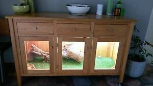 Adult Bearded Dragon and Enclosure Winchelsea Surf Coast Preview
