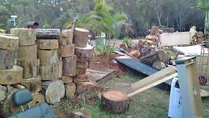 Firewood - unsplit full ute load delivered Russell Island Redland Area Preview