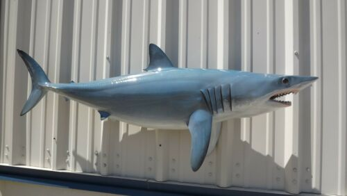 """57"""" Mako Shark Two Sided Shark Mount Replica - 10 Business Day Production Time"""