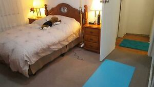 Point Frederick Room Available $230 include bills East Gosford Gosford Area Preview