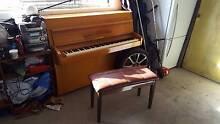 Free Piano Kingston Kingborough Area Preview