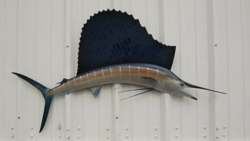 "52"" Sailfish Half Fish Mount Replica - 10 Business Day Production Time"