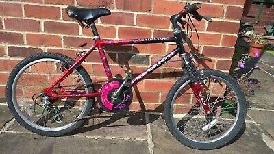Raleigh Activator child's bike