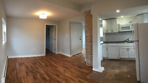 BRIGHT NEWLY RENOVATED 2 BDRMS, 6 APPLIANCES, GRANITE, PET OK