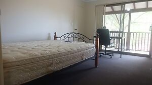 Great condition master room near UWA Crawley Nedlands Area Preview