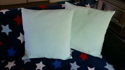 January r 296#  Two Light Green Good Condition Cushions $7