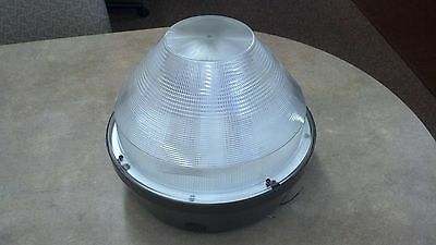 Stonco Canopy Induction Fixture 85w