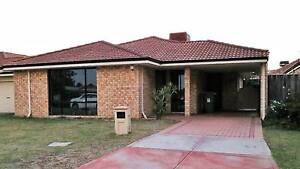 Modern Villa - Letting Only Redcliffe Belmont Area Preview