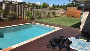Room for rent Pottsville Tweed Heads Area Preview