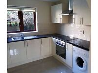 HANDYMAN, BUILDER, PROFESSIONAL PAINTING AND DECORATING SERVICES, TILING, FLOORING