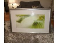 Beautiful large framed painting £120 ono