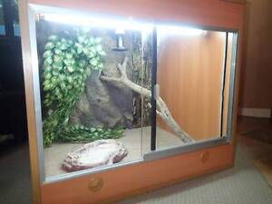 REPTILE ENCLOSURE FULLY WIRED, LIGHT, HEAT AND THERMOSTAT Albion Park Shellharbour Area Preview