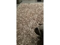 Beautiful Beige Thick Shaggy Cascade Rug --- from a non pet house!