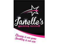 Domestic/ Commercial/Business Cleaning and ironing service