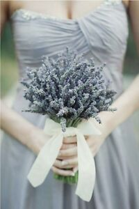 Beautiful dried lavender bundles.
