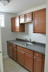 Two Bedroom Lower Unit - Close to Downtown