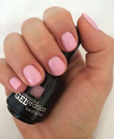 Shellac / Gel Nail Polish £10 per set - Mobile